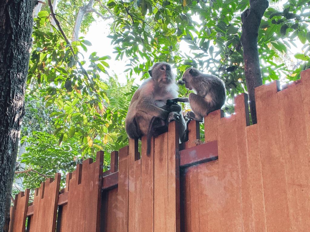 Почивка на Рейлей Бийч в Краби, Тайланд | Съвети при пътуване до Тайланд | блог на Михаела от Quite a Looker